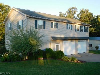 Williamstown Single Family Home For Sale: 1663 Access Road Rd