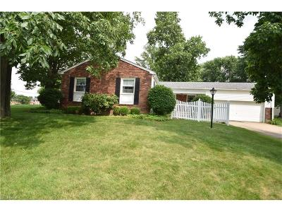 Boardman Single Family Home For Sale: 91 Green Bay Dr