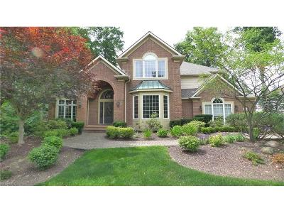 Solon Single Family Home For Sale: 6120 Penfield Ln
