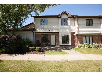 Mentor Condo/Townhouse For Sale: 7077 Village Dr