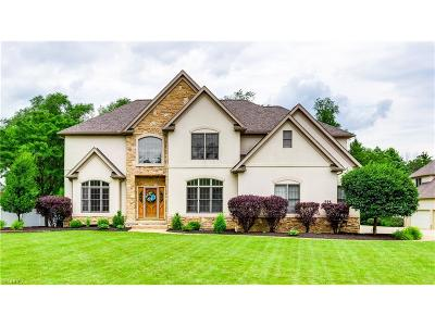 Copley Single Family Home For Sale: 324 Greensfield Ln