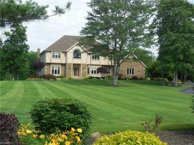 Solon Single Family Home For Sale: 6485 Liberty Rd