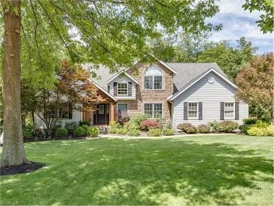Aurora Single Family Home For Sale: 810 Lake Trl