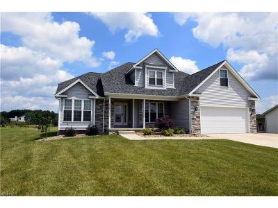 Youngstown Single Family Home For Sale: 6479 Bay Meadow Ct