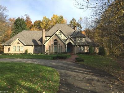Canfield Single Family Home For Sale: 4184 Leffingwell Rd