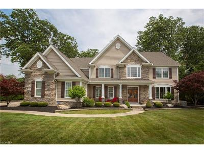 Avon Lake Single Family Home For Sale: 581 Buckhead
