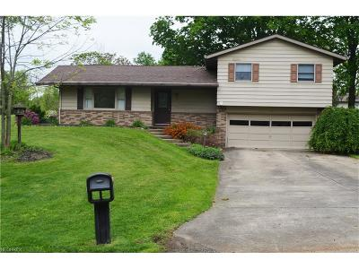 Single Family Home For Sale: 10800 Belle Dr