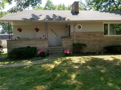 Single Family Home For Sale: 8241 Lewis Rd