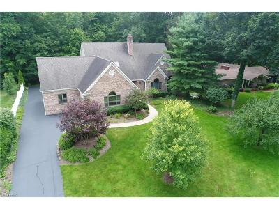 Poland Single Family Home For Sale: 7227 Yellow Creek Dr
