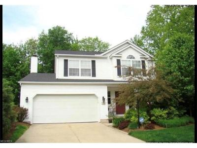 Chardon Single Family Home For Sale: 104 Middle Post Pt