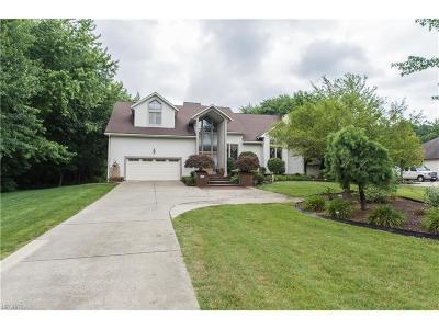 Warren Single Family Home For Sale: 1680 Henn Hyde Rd Northeast