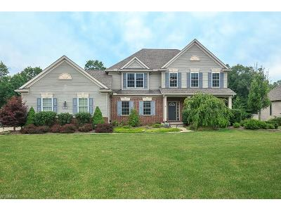 Hinckley Single Family Home For Sale: 110 Wakefield Run Blvd