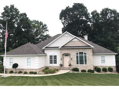 Zanesville Single Family Home For Sale: 5560 Pine Valley Dr