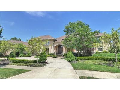 Solon Single Family Home For Sale: 7477 Birkdale Ct