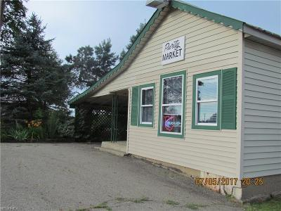 Licking County Commercial For Sale: 10316 Purity Road