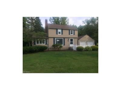 Youngstown Single Family Home For Sale: 2219 Oran