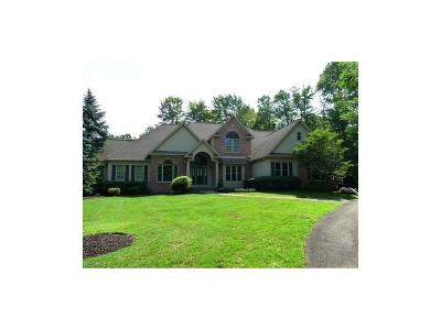 Concord Single Family Home For Sale: 7575 Nancy Ann Dr