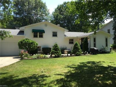 Canfield Single Family Home For Sale: 6800 Lockwood Blvd