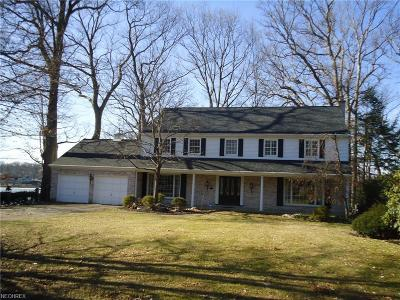 Summit County Single Family Home For Sale: 3159 Silver Lake Blvd