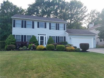 Twinsburg Single Family Home For Sale: 1208 Sharonbrook Dr