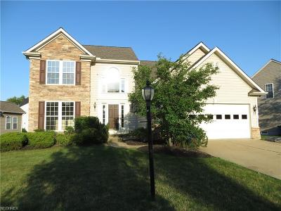 Berea Single Family Home For Sale: 126 Cobblestone Ct
