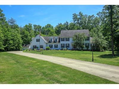 Kirtland Hills Single Family Home For Sale: 9450 Winterberry Ln