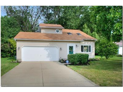 Painesville Single Family Home For Sale: 745 Ericston Ct