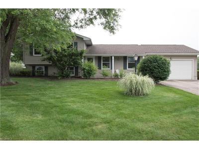 Boardman Single Family Home For Sale: 563 Green Garden Dr