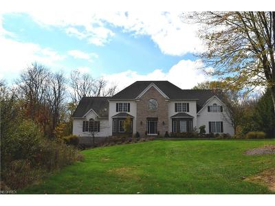 Chagrin Falls Single Family Home For Sale: 9950 Waterford Trl
