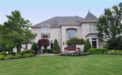 Westlake Single Family Home For Sale: 1995 Clarendon Ct
