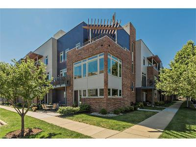 Cleveland Condo/Townhouse For Sale: 1241 West 75th St