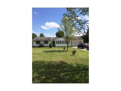 Garrettsville Single Family Home For Sale: 11216 Center St