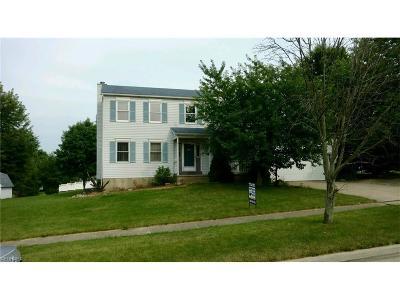 Medina County Single Family Home For Sale: 3717 Fernwood Dr