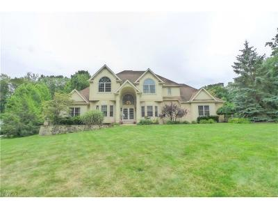Concord Single Family Home For Sale: 10680 Mount Royal Dr