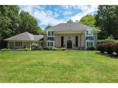 Canfield Single Family Home For Sale: 7873 Memory Ln