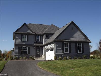Geauga County Single Family Home For Sale: 17591 Gates Landing Dr