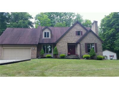 Garrettsville OH Single Family Home For Sale: $349,900