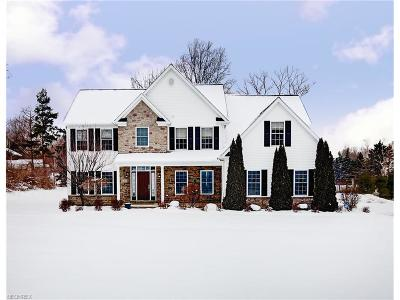 Willoughby Hills Single Family Home For Sale: 2412 Pine Valley Dr