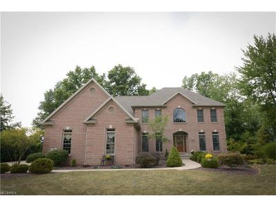 Canfield Single Family Home For Sale: 34 Timber Run Ct