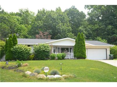 Wickliffe Single Family Home For Sale: 28852 Serenity Ln