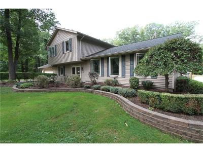Concord Single Family Home For Sale: 7758 Hermitage Rd