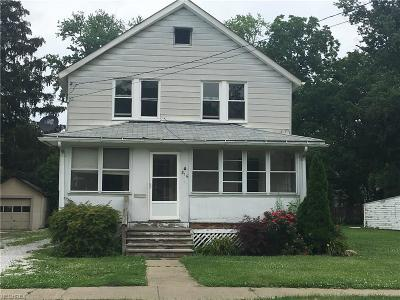 Painesville Single Family Home For Sale: 816 North State St
