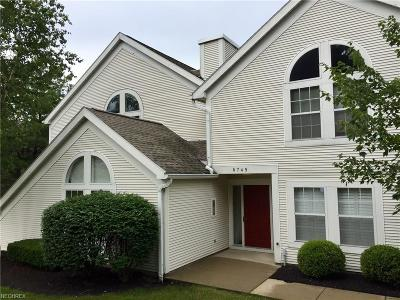Canfield Condo/Townhouse For Sale: 6745 Tippecanoe Rd