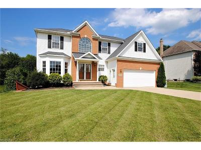 Solon Single Family Home For Sale: 6645 Andre Ln