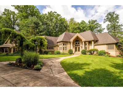 Summit County Single Family Home For Sale: 2930 Massillon Rd