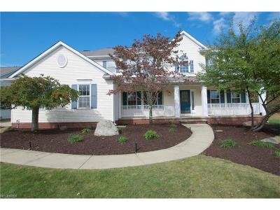 Broadview Heights Single Family Home For Sale: 1114 Fireside Trl