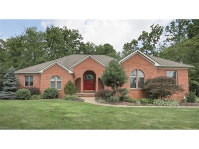 Canfield Single Family Home For Sale: 3972 Shields Rd