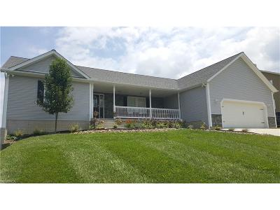 Single Family Home For Sale: 5725 Pine Valley Dr