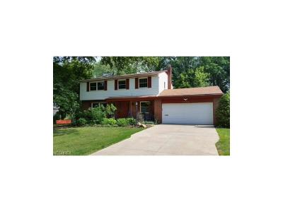 Brecksville, Broadview Heights Single Family Home For Sale: 6556 Lloyd Dr