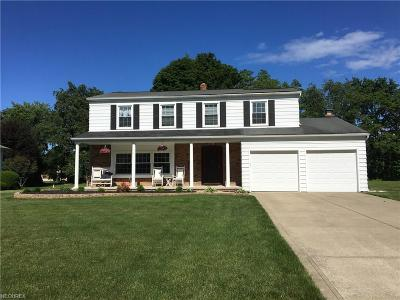 Mentor Single Family Home For Sale: 5673 Louise Dr